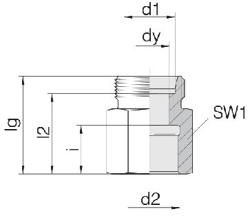 Соединение для труб переходное прямое 24-S-L10-IG1/2