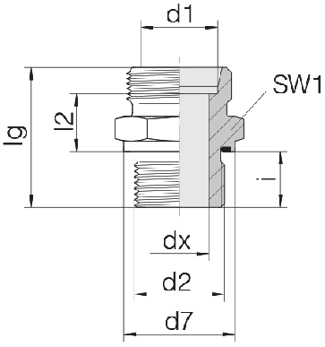 Соединение для труб штуцерное прямое коническое 24-SDS-S25-G1/2E