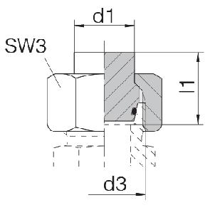 Заглушка на трубу с гайкой и уплотнительным кольцом 24-PLOC-L6